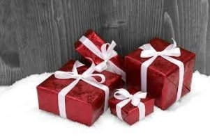 Great Gift Giving Program in Northern NH