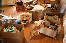 5 Signs of a Hoarder